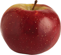 Baldwin apple type | Varieties