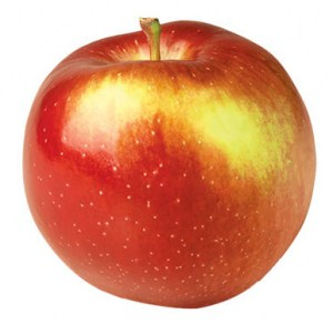 Empire apple type | Varieties