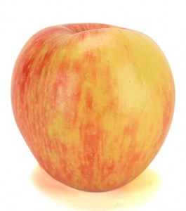 Honeycrisp apple type | Varieties