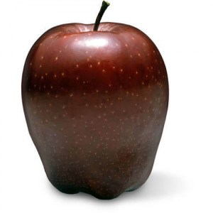 Red Delicious apple type | Varieties