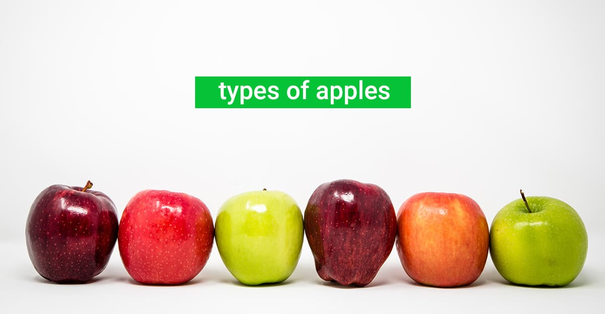 Types of Apples grocery store United States
