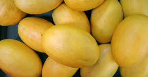 Types of melons at grocery store - Canary melon