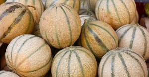 Types of melons at grocery store - Cantaloupe melon