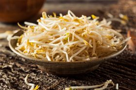 Bean Sprouts in the Grocery Store: Where to Find & Buy