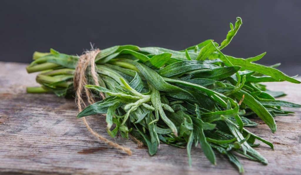 Tarragon fresh features, fun facts and flavor