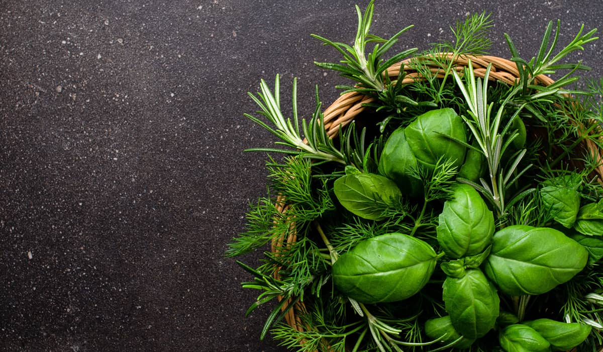 Tips to buy and store herbs, fresh or dried