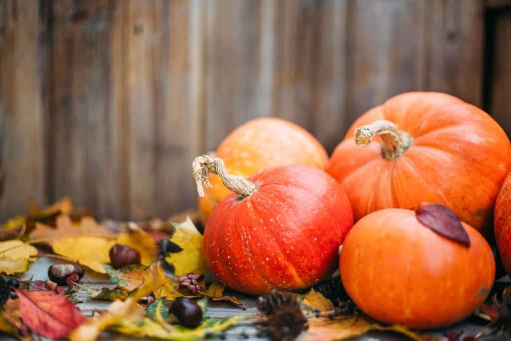 Seasonal produce in November: Pumpkins, the Halloween starts