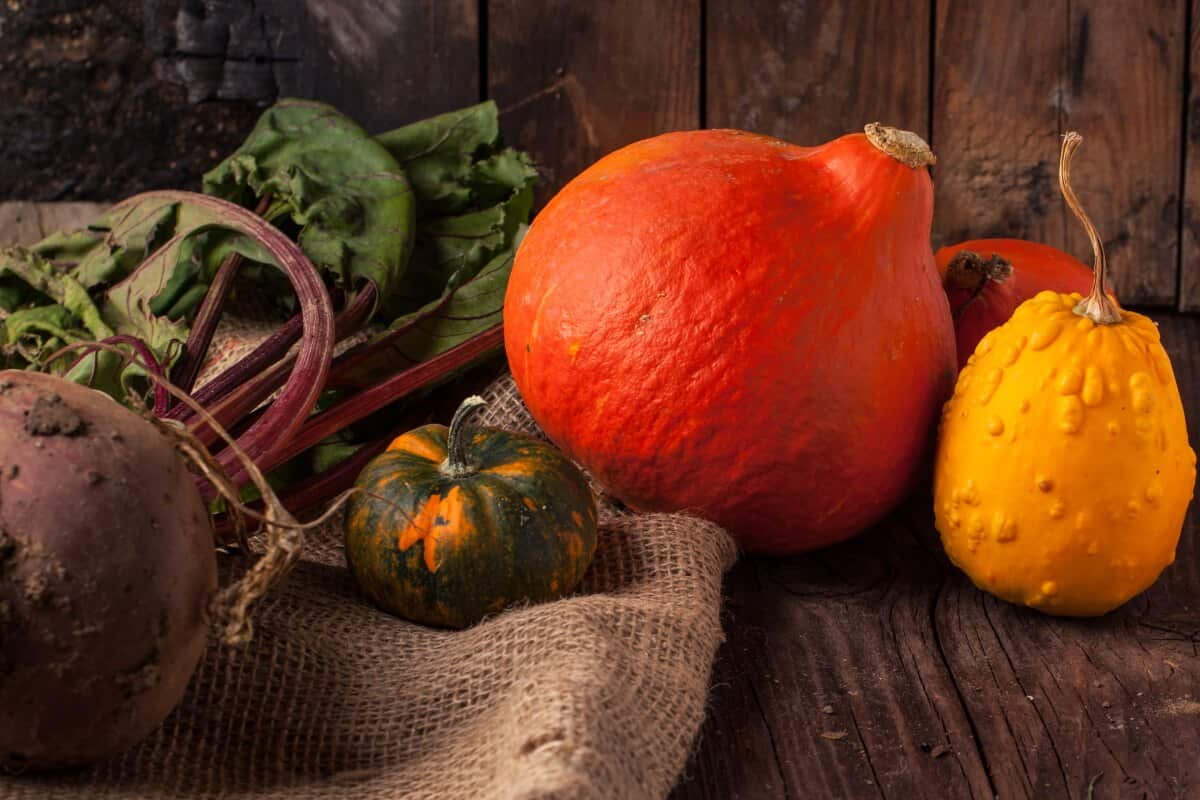 These seasonal fruits and veggies are available all across the United States in November