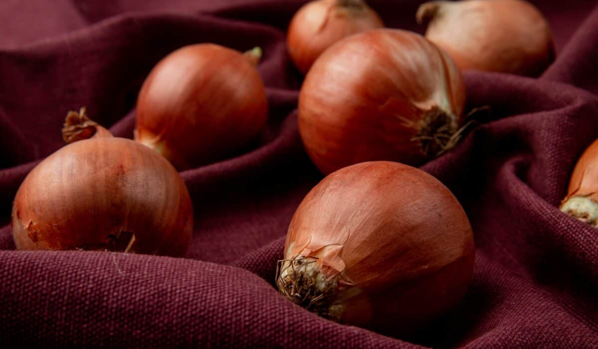 4 Essential tips to make onions last longer