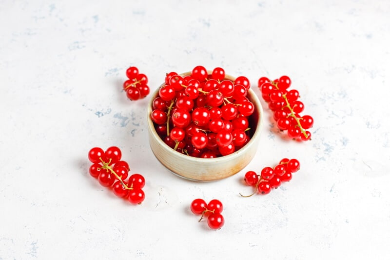 A guide to help you buying currants